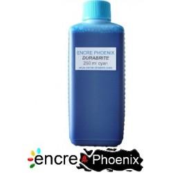 Encre en bouteille 250 ml compatible EPSON DURA